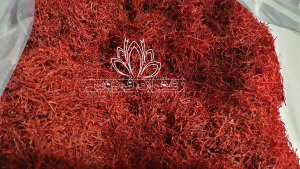 قیمت خرید زعفران کیلویی قائنات